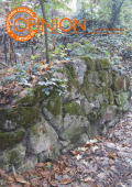 NÚM. 271 • OCTUBRE 2014 - Círculo de Opinión