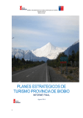 Informe 1 Diagnóstico - Ilustre Municipalidad de Antuco