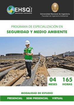 SEGURIDAD Y MEDIO AMBIENTE - EHSQ Group