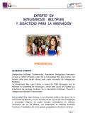 Experto Inteligencias Multiples 2015 - Escuela IMP