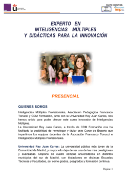 Experto Inteligencias Multiples 2015 - Escuela IMP