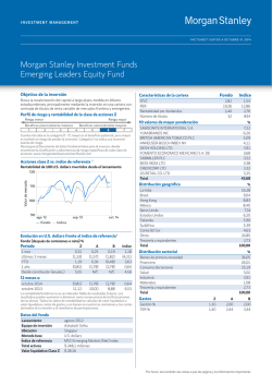 Morgan Stanley Investment Funds Emerging Leaders Equity Fund