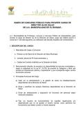 bases de concurso público para proveer cargo de director - Ilustre