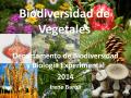 TEO 16. Vasculares sin semilla 2 - Departamento de Biodiversidad y