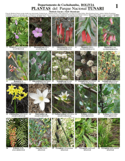 PLANTAS del Parque Nacional TUNARI - Field Guides - The Field