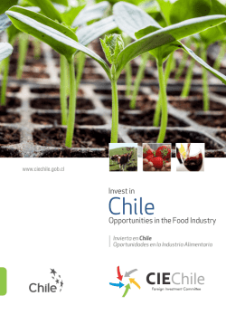 invierta en chile - Foreign Investment Committee