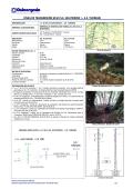 LÍNEA DE TRANSMISIÓN 60 kV S.E. HUATZIROKI I – S.E. YURINAKI