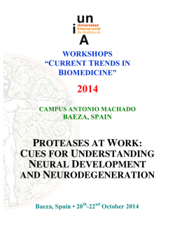 proteases at work - Universidad Internacional de Andalucía