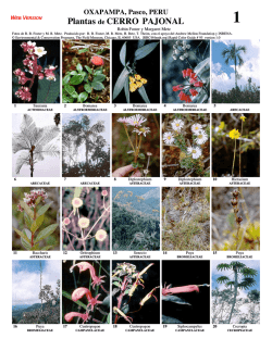 Plantas de CERRO PAJONAL - Field Guides - The Field Museum