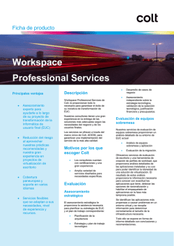 Workspace Professional Services - Colt IT Services