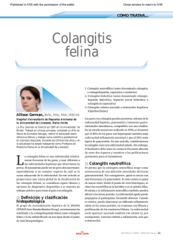 Cómo tratar... Colangitis felina. In: Veterinary Focus 19(2)