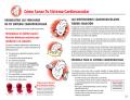 Cómo Sanar Tu Sistema Cardiovascular - FundaNatura