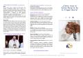 ¿Cómo rezo el Santo Rosario de la Virgen María? - Webnode
