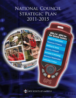 National Council Strategic Plan 2011-2015