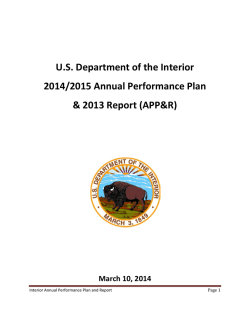 DOI FY2014-2015 Annual Performance Plan and FY2013 Report