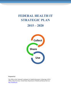 Federal Health IT Strategic Plan, 2015-2020 (PDF)