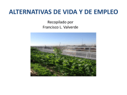ALTERNATIVAS DE VIDA Y DE EMPLEO