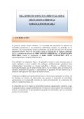RELATORIO DE IMPACTO AMBIENTAL (RIMA