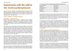Experiments with the wild at the Oostvaardersplassen