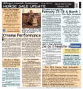 horse sale update - Billings Livestock Commission
