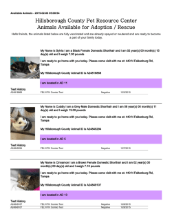 Available Animals - Hillsborough County Government