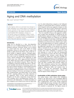 Aging and DNA methylation