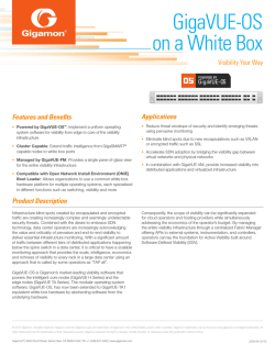 GigaVUE-OS on a White Box Product Brief