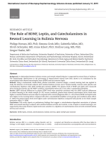 The Role of BDNF, Leptin, and Catecholamines in Reward Learning