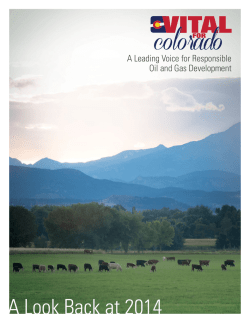 A Look Back at 2014 - Vital For Colorado
