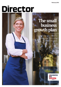 The small business growth plan