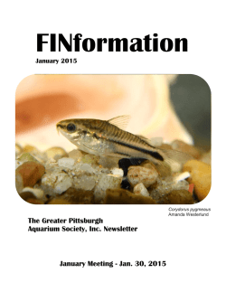 FINformation_January2015 - Tropical Fish Club of Erie County