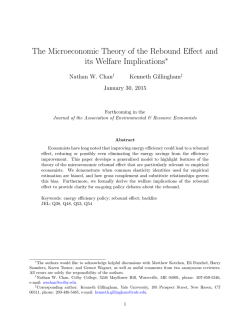 The Microeconomic Theory of the Rebound Effect