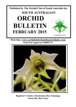 February 2015 - Orchid Club of South Australia Inc.