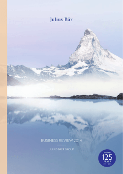 Business review 2014