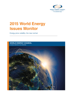 2015 World Energy Issues Monitor