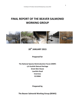 final report of the beaver salmonid working group