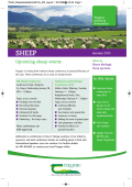 Sheep Newsletter - January 2015
