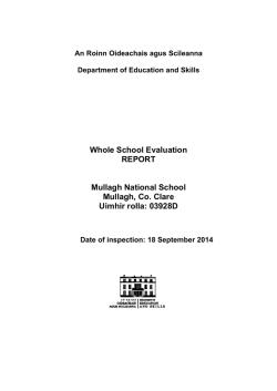 Whole School Evaluation REPORT Mullagh National School