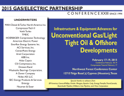 Preliminary Agenda - Gas/Electric Partnership