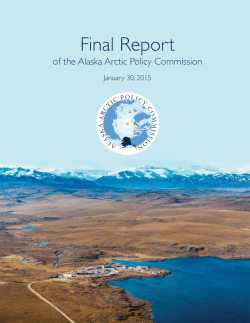 Final Report - The Arctic Journal