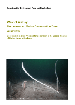 Irish Sea - West of Walney rMCZ site summary