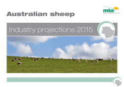 View the 2015 sheep industry projections document here