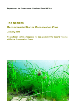 The Needles - Defra Consultation Hub