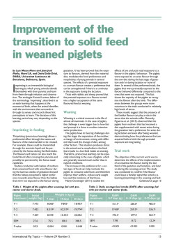 Improvement of the transition to solid feed in weaned piglets