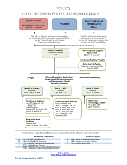 Organization Chart - Office of University Audits