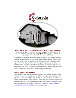 right c - WHAT does HAIL DAMAGE look like?