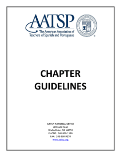 Chapter Guidelines