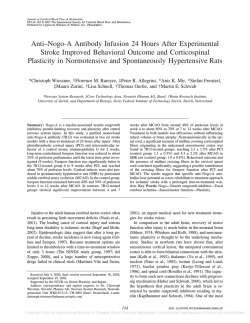 Anti–Nogo-A Antibody Infusion 24 Hours After
