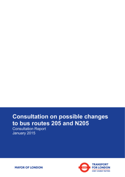 205 and N205 consultation report
