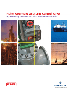 Fisher Optimized Antisurge Control Valves